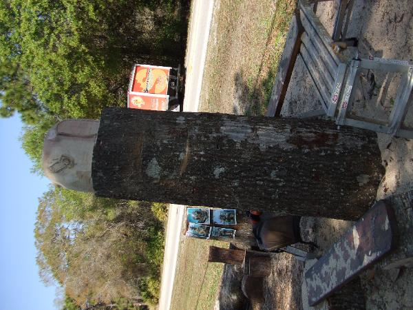 Chainsaw carving michigan carver florida